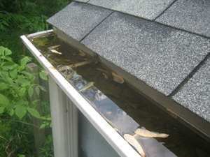 clogged gutter web